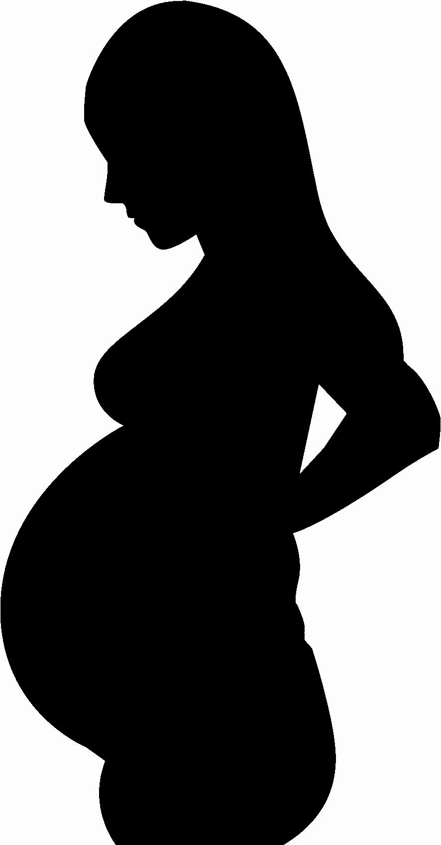 ciąża procentowo