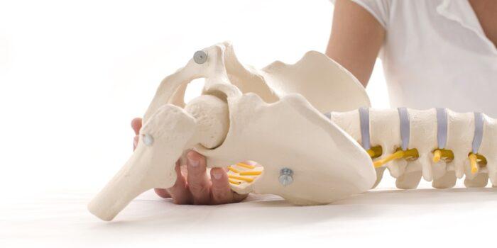 Oferta fizjoterapia