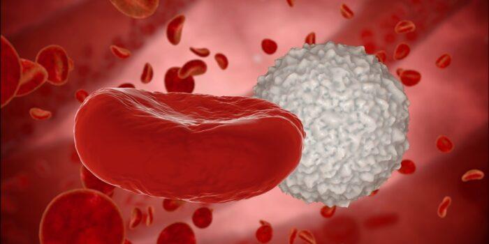 Pakiet Meavita Anemia