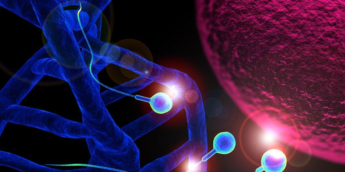 Zespół duplikacji chromosomu 15q11-q13